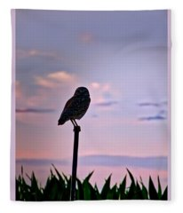Burrowing Owl On A Stick Fleece Blanket