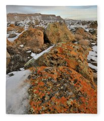 Colorful Boulders Of The Book Cliffs Fleece Blanket