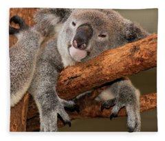 Cute Australian Koala Resting During The Day. Fleece Blanket