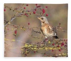 Fieldfare Fleece Blanket