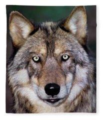 Gray Wolf Portrait Endangered Species Wildlife Rescue Fleece Blanket