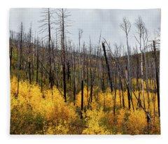 Life And Death Fleece Blanket