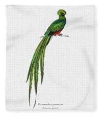 Pavonine Quetzal  Pharomachrus Pavoninus Illustrated By Charles Dessalines D Orbigny  1806 1876 3 Fleece Blanket