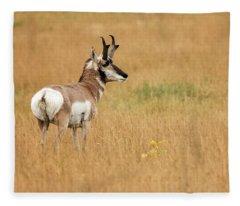 Pronghorn Buck Fleece Blanket