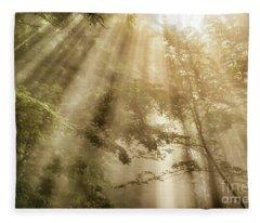 Rays Of Light In Forest Fleece Blanket
