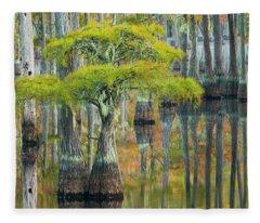 Reflection Of Bald Cypress Taxodium Fleece Blanket