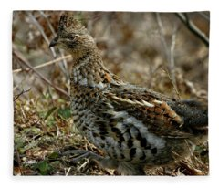 Ruffed Grouse 50702 Fleece Blanket