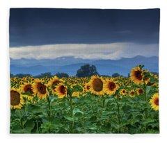 Fleece Blanket featuring the photograph Sunflowers Under A Stormy Sky by John De Bord
