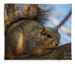 Texas Fox Squirrel Fleece Blanket