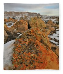 The Colors Of The Book Cliffs Fleece Blanket