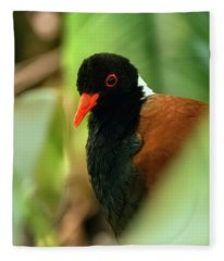 White Naped Pheasant Pigeon Fleece Blanket