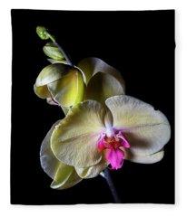 Yellow Phal Fleece Blanket