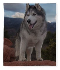 Timber Fleece Blanket