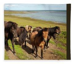 Icelandic Horses Fleece Blanket