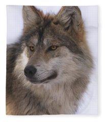 Mexican Grey Wolf Fleece Blanket