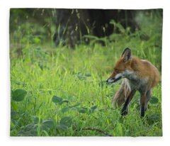Red Fox Fleece Blanket