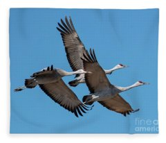 Tight Formation Fleece Blanket