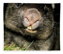 Wombat At Night Fleece Blanket