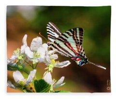 Zebra Swallowtail Fleece Blanket