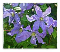 2019 June At The Gardens Prince Charles Clematis Fleece Blanket