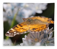 Designs Similar to American Lady Butterfly