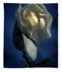 Fleece Blanket featuring the photograph Morning Light by Allin Sorenson