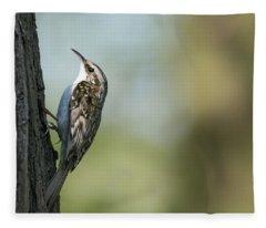 Treecreeper Fleece Blanket