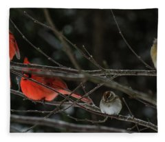 3cardinals And A Sparrow Fleece Blanket