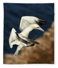 Northern Gannet Fleece Blanket