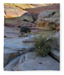 Entrance To Pastel Canyon In Valley Of Fire Fleece Blanket