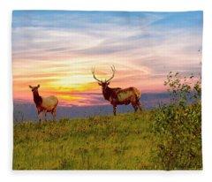 A Cow And Bull Elk Standing On Top Of A Ridge. Fleece Blanket