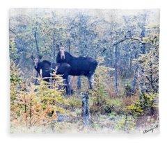 A Cow Moose And Her Calf. Fleece Blanket