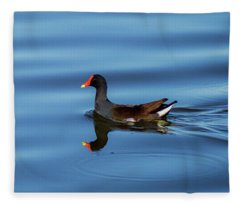 A Day For Reflection Fleece Blanket