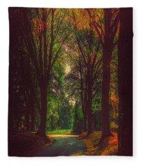 A Moody Pathway Fleece Blanket
