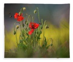 About Little Bee Fleece Blanket