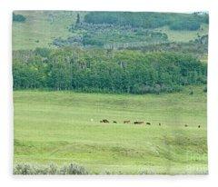 Across The Valley Fleece Blanket