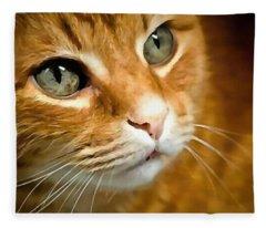 Adorable Ginger Tabby Cat Posing Fleece Blanket