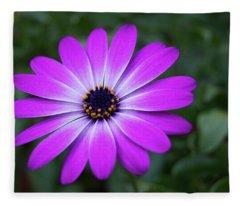 African Daisy Fleece Blanket
