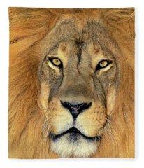 African Lion Portrait Wildlife Rescue Fleece Blanket