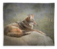 Afternoon Repose Fleece Blanket