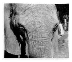 Aged Friend - Elephant Fleece Blanket
