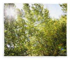 Alpine Sunlight In The Rockies Fleece Blanket