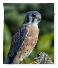 American Kestrel 9251501 Fleece Blanket