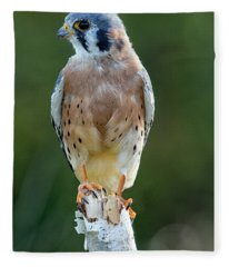 American Kestrel 9251502 Fleece Blanket