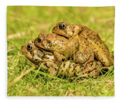 American Toad Western Brooke Pond, Grose M Fleece Blanket