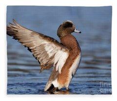 American Wigeon Delight Fleece Blanket
