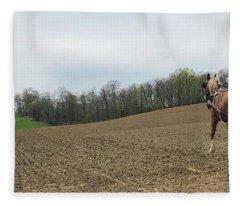 Amish Spring Fleece Blanket