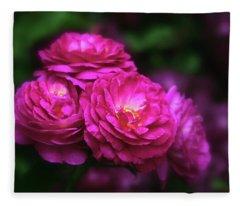 Ardent Rose Fleece Blanket