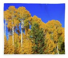 Arizona Aspens And Blowing Leaves Fleece Blanket