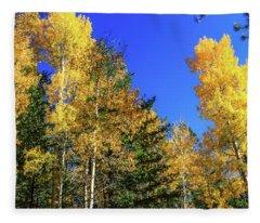 Arizona Aspens In Fall 1 Fleece Blanket